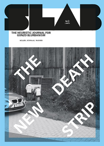Download publication as PDF